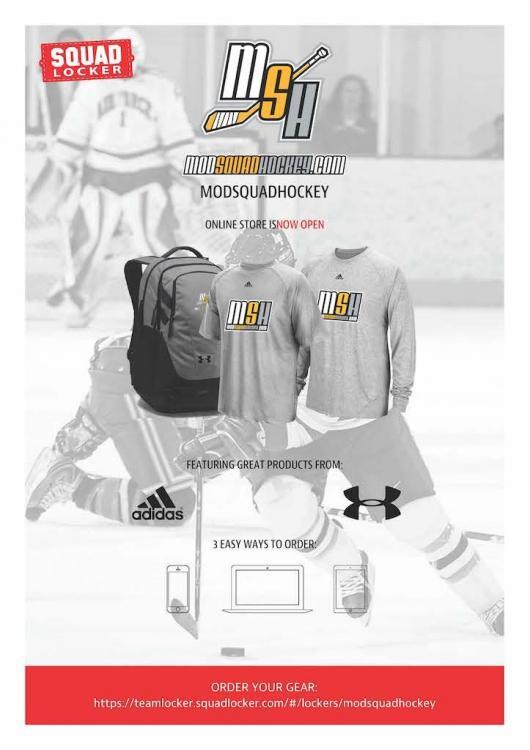 squadhockey.thumb.jpg.087499586a36b8bd45650be55815c470.jpg